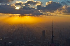 sunset over puxi (alexander reneby lithman) Tags: china city sunset skyline shanghai   pudong   orientalpearltower puxi   swfc   shanghaiworldfinancialcenter