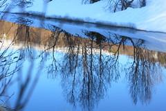 Frystul 2 (bjarne.stokke) Tags: snow canon river 50mm ef50mmf18ii sn 2010 vr elv blueribbonwinner opposti canoneosrebelt1i mygearandme ringexcellence blinkagain bestofblinkwinners aboveandbeyondlevel1 aboveandbeyondlevel2