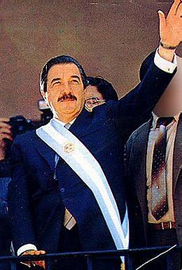 Alfonsín, dirigentes y sistema