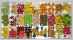 Re-ment Fruit Storage (CarolineSwing) Tags: fruit miniature doll pears papaya mini mimo storage lemons persimmons pineapple grapes guava peaches apples oranges rement melon dollhouse dragonfruit starfruit  orcara