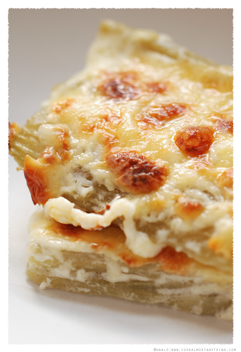 Cardoons with Béchamel sauce© by Haalo