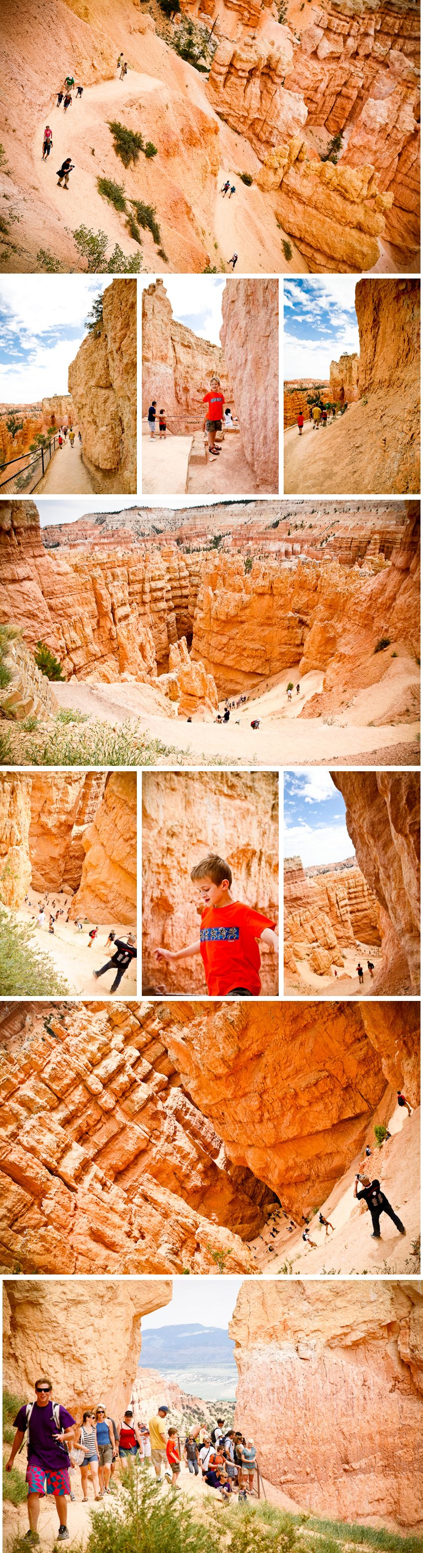 Bryce Trail collage - lwr res