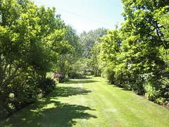Gossler Farm Lawn