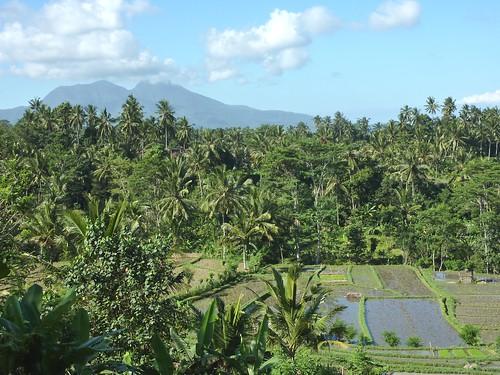 Bali-Tirtagangga (90)
