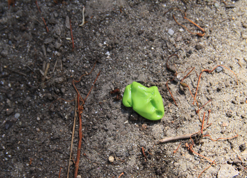 green gum cache on ground
