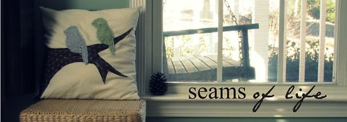 window banner/ january 2010