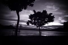 Scenery_1007_146