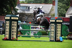 169 Promised Land FLETCHER Tina GBR GD/15//Brown///Mr Graham William Fletcher (Stanthefan) Tags: horses dublin mare dam equestrian sire irl rds showjumping countydublin foal eventing republicofireland failteireland