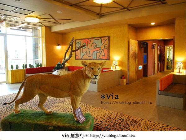 【新竹住宿】來去和動物住一晚~關西六福莊生態渡假旅館4