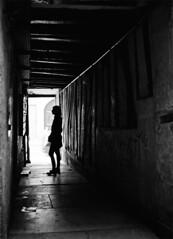 (flallier) Tags: paris trix nikonfe2 noiretblanc bw blackandwhite backlight 35mm argentique trix400 d76 passage human black white noir blanc backlighting classicblackwhite françoislallier yahoo:yourpictures=blackandwhite 2010 nb bnw mono monochrome