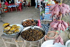Roadside snacks: Locusts, tortoises, de-feathered quail