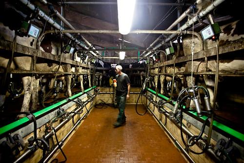 Combien co te vraiment un litre de lait m z res la r colte d 39 apr s - Combien coute un lavage en machine ...