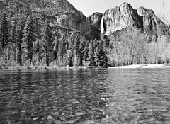 Whim (Thomas Hawk) Tags: bw waterfall yosemite natureshand
