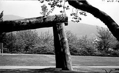 Trip to Lord Stanleys' Park (dances_w_clouds) Tags: vancouver canon 1 stanleypark elan 100asa 2010 id1111 aristapremium kodacplusx