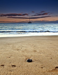 Yeah, I know, Another Rock (Shannon Cayze) Tags: ocean beach water rock sunrise landscape hawaii sand scenic maui shannon 5d canon5d canonef2470mmf28lusm circularpolarizer makena 2470mm gnd bwcircularpolarizer graduatedneutraldensity cayze 5dmarkii canon5dmarkii shannoncayze hitech3stopgnd makenabeachresort hitech2stopgnd