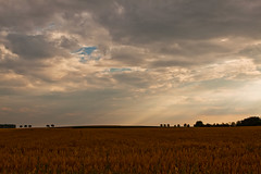 It's gonna rain (again) (jeroenf) Tags: sky cloud field landscape belgium canonef2470mmf28lusm sunray vlaamsbrabant linter canoneos50d