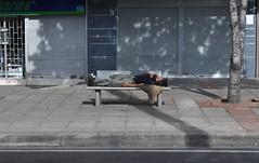 Durmiendo en la Banca - Sleeping on the Bench (CAUT) Tags: camera sleeping digital bench photography reflex nikon bogota bogot homeless august agosto digitalcamera asleep dslr dormir indigente 2010 banca fotografa durmiendo cmara rflex d90 cmaradigital pordiosero exposicinfotogrfica nikond90 fokeando