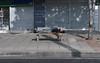 Durmiendo en la Banca - Sleeping on the Bench (CAUT) Tags: camera sleeping digital bench photography reflex nikon bogota bogotá homeless august agosto digitalcamera asleep dslr dormir indigente 2010 banca fotografía durmiendo cámara réflex d90 cámaradigital pordiosero exposiciónfotográfica nikond90 fokeando