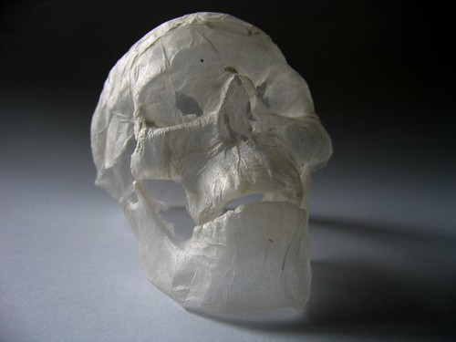 tissue paper sculpture - skull