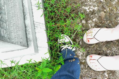 My Feet, My Cemetery