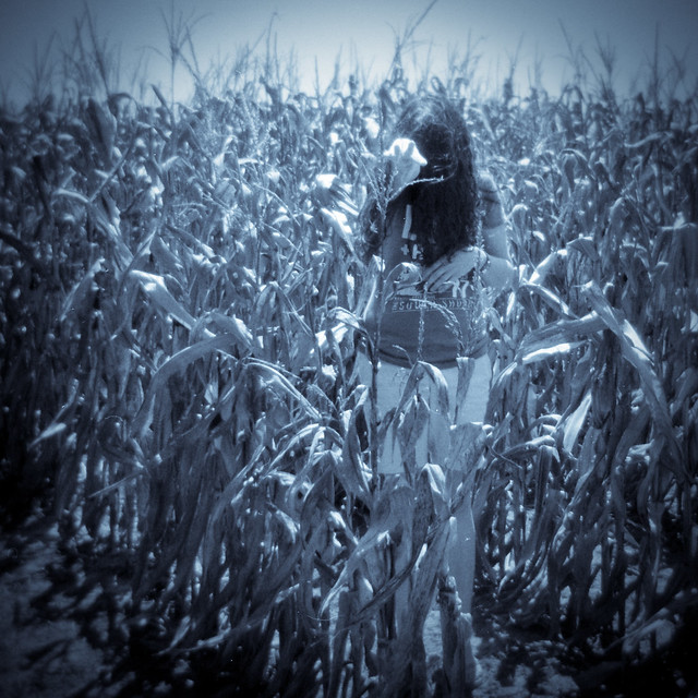 creeper of the corn