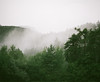 (Gebhart de Koekkoek) Tags: trees green mamiya film fog forest tirol nebel spooky 6x7 wald tyrol mamiya7 mieming hochnebel mötz