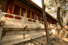 Imperial Gardens 35 (David OMalley) Tags: china city red beauty architecture capital chinese beijing palace forbidden empire imperial  forbiddencity dynasty emperor  grandeur  verbotenestadt citinterdite    verbodenstad cidadeproibida cittproibita yasakehir chineseempire    ipinagbabawalnalungsod cmthnhph