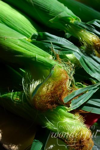 CornHusks