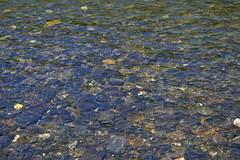 Yellowstone River (bhophotos) Tags: travel usa nature water river landscape stream pentax stones yellowstonenationalpark yellowstone wyoming ynp k110d