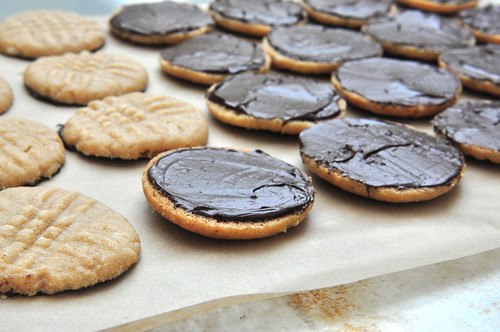 Peanut Butter Cookies - Chocolate Coating
