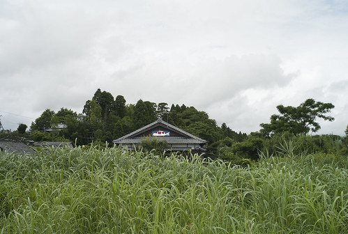 JC0805.061 宮崎県西都市 M8.2sn35a#