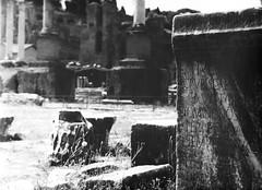 Fori (3) (Umberto Altini) Tags: roma 120 tlr foro romano yashica fori foma yashicad epigrafe ubu 4050 fiberbased medioformato rolleiretro100 rolleiretro biottica g4050 hpg4050 fomabron ubu84 baritata contrasto3 fomabronvariant fomabronvariant112matt