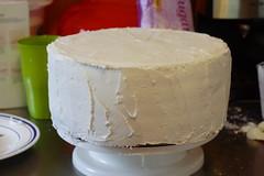CakeLayersAug20100009