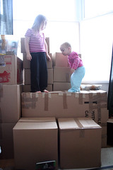 Ready?  Nearly (m a r t y n) Tags: liverpool moving packing august ready lula boxes nearly florrie mapledale