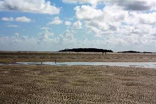 D7 Sand bar