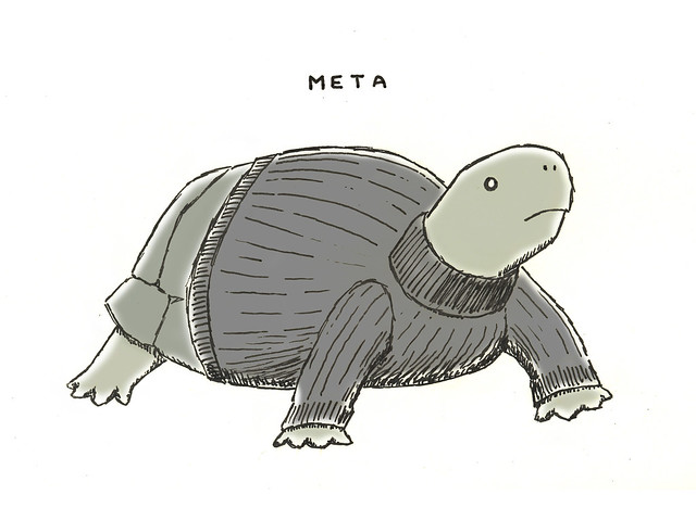 Turtle wearing a turtle neck sweater
