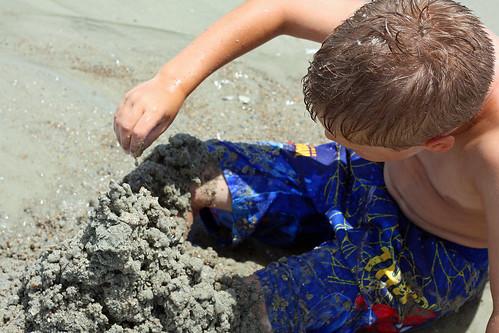 D8 Sam in sand