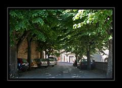 IMG_1271 (**Gianluke**) Tags: street italy landscape italia centro folklore campagna campaign marche filk montegiorgio fermano
