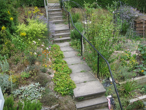 path 01 Aug 2010