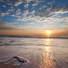 (Pawel Papis Photography) Tags: ocean wood morning sea vacation sky sun holiday seascape beach water clouds sunrise reflections log branch wave australia treetrunk queensland trunk dri surfersparadise goldcoast pawel vertorama