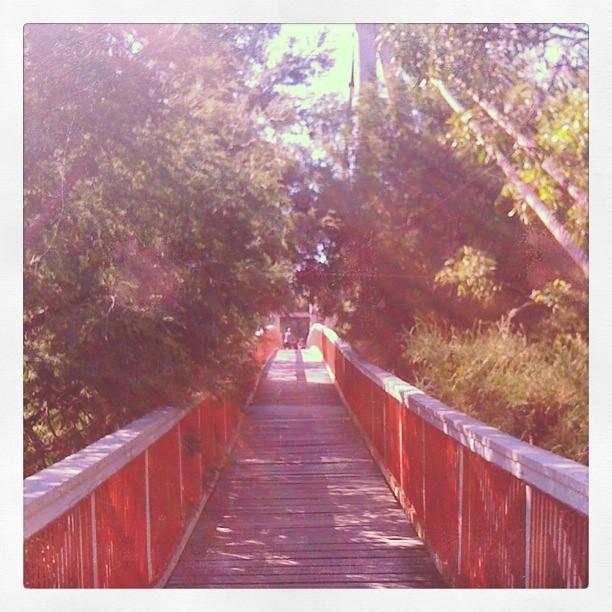 The Studley Park footbridge