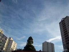 Crepúsculo 01/02/2011