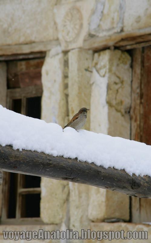 Winter at Cappadocia