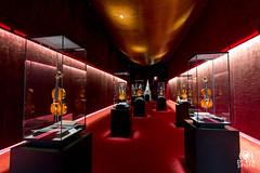 Galleria Stradivari (andrea.prave) Tags: cremona italia italy museo violino stradivari museum musée 博物館 музей متحف 博物馆 violin violín violon violine バイオリン скрипка كمان 小提琴