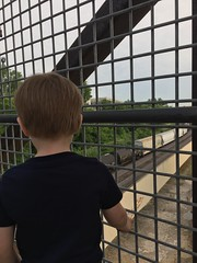 """Paul Watches Trains in Kansas City • <a style=""""font-size:0.8em;"""" href=""""http://www.flickr.com/photos/109120354@N07/35659204916/"""" target=""""_blank"""">View on Flickr</a>"""