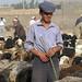 Uyghur shepherd