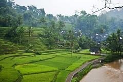 KampungNaga Hujan (irwan+-+(vixtorirwan.net)) Tags: kampungnaga