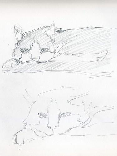 Sam-sketch