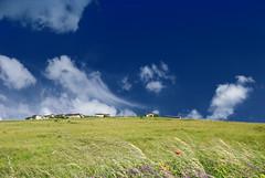 Paesaggi (Tiziano Marinelli Photography) Tags: tizianomarinelli nikon d300 immagini paesaggi landscape castelluccio umbria norcia giugno sole cielo nuvole campi fiori colori particolari