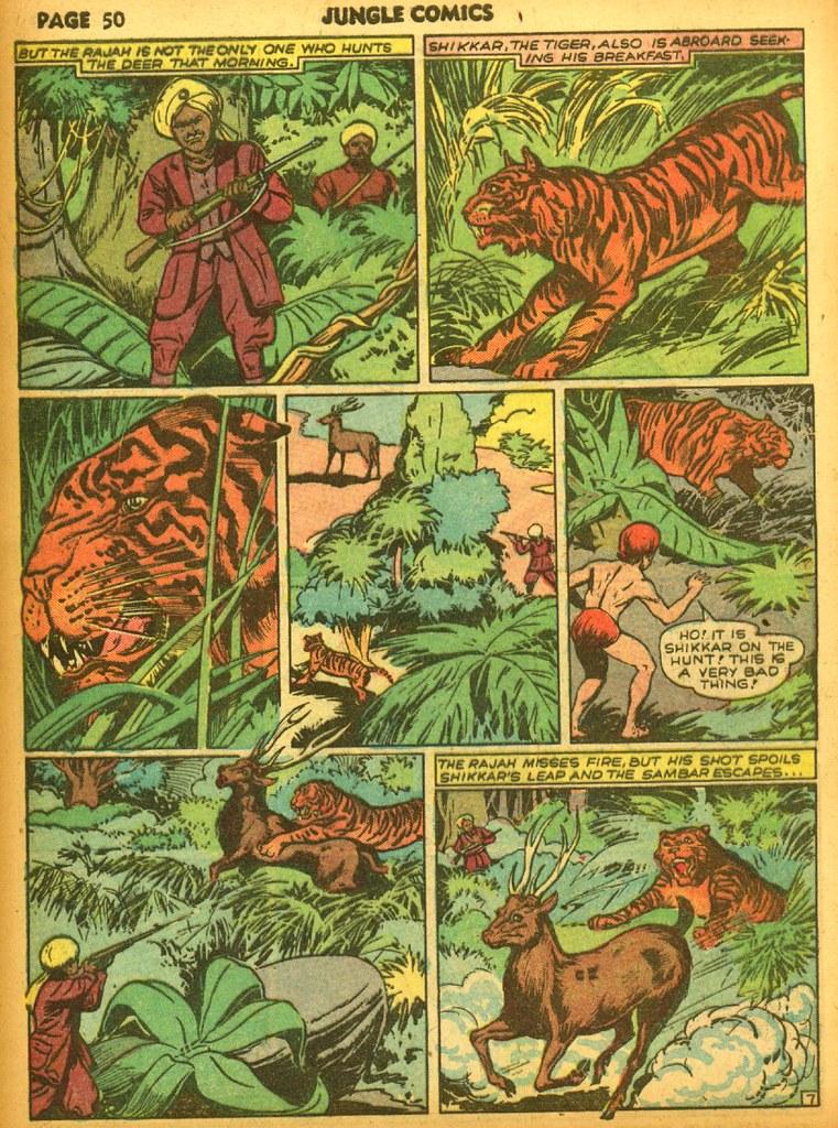 jungle16_52